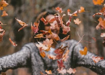 fall fashion statement wingz