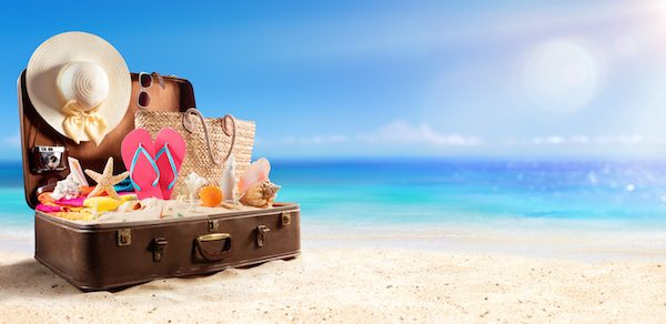 wingz holiday luggage ideas